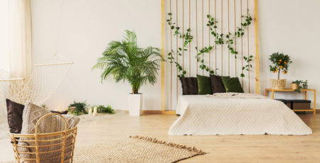 Jakie rośliny do sypialni wybrać – kwiaty doniczkowe dla dobrego snu